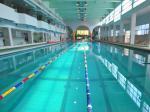 国际标准游泳池